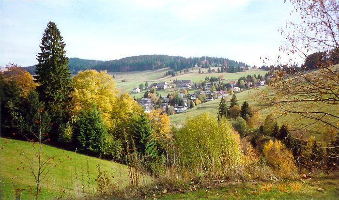 الغابة السوداء بالمانيا