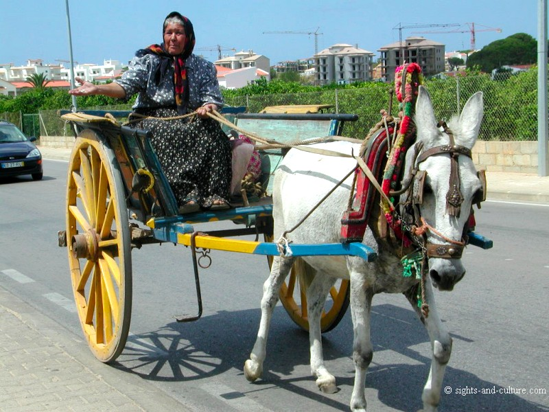 Portugal - donkey carriage